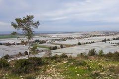 Agricoltura che coltiva le serre, vista dalle montagne di Carmel, Israele Fotografie Stock Libere da Diritti