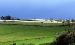 Agricoltura collinare nell'inverno, Galles Fotografia Stock Libera da Diritti