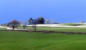 Agricoltura collinare nell'inverno, Galles Immagini Stock Libere da Diritti