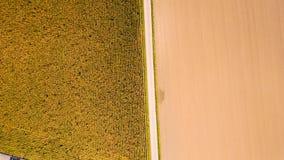 Agricoltura da sopra Fotografia Stock Libera da Diritti