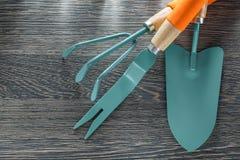 Agricoltura degli strumenti sul bordo di legno Fotografia Stock