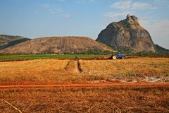 Agricoltura dei funzionamenti fotografie stock
