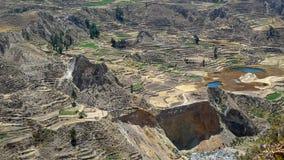 Agricoltura dei terrazzi in montagne delle Ande del Perù Fotografia Stock Libera da Diritti