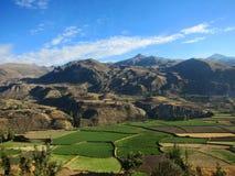 Agricoltura dei terrazzi nel Perù Fotografie Stock Libere da Diritti