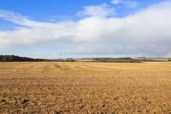 Agricoltura dei wolds di Yorkshire Immagini Stock