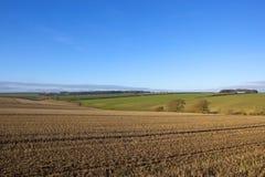 Agricoltura dei wolds di Yorkshire Fotografia Stock Libera da Diritti