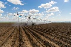Agricoltura del campo dell'azienda agricola del cerchio della ruota idraulica di irrigazione del Centro-perno Fotografia Stock Libera da Diritti