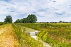 Agricoltura del canale per la raccolta delle acque Fotografie Stock