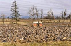 Agricoltura del cavolo rosso ed aziende agricole Oregon Fotografia Stock Libera da Diritti