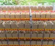 Agricoltura del cereale e della pianta di seme su un pavimento di legno Immagini Stock Libere da Diritti