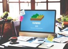 Agricoltura del concetto della natura di tecnologia di agricoltura Immagini Stock Libere da Diritti