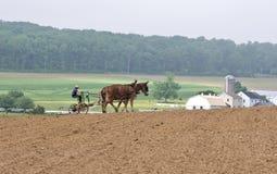 Agricoltura del modo antiquato Fotografia Stock