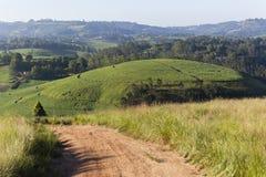 Agricoltura del paesaggio Fotografie Stock