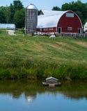 Agricoltura del paesaggio con il granaio ed il silo dello stagno Fotografia Stock Libera da Diritti