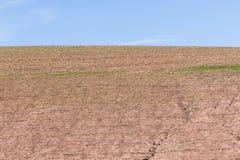 Agricoltura del paesaggio dei raccolti Immagini Stock Libere da Diritti