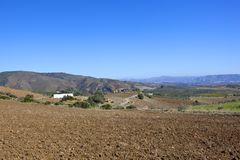 Agricoltura del paesaggio della Spagna del sud Fotografia Stock