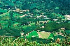 Agricoltura del paesaggio di Topview Fotografie Stock Libere da Diritti