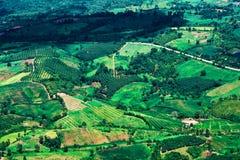 Agricoltura del paesaggio di Topview Immagini Stock