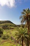 Agricoltura del paesaggio in La Gomera Immagine Stock Libera da Diritti