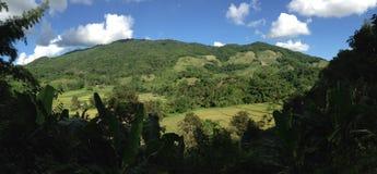 Agricoltura del panorama del paesaggio Fotografie Stock