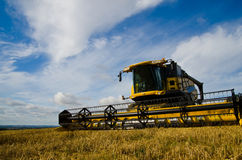 Agricoltura del raccolto Immagini Stock Libere da Diritti