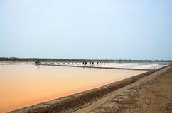 Agricoltura del sale o stagno di evaporazione del sale Fotografia Stock