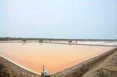 Agricoltura del sale o stagno di evaporazione del sale Fotografia Stock Libera da Diritti