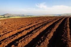Agricoltura del suolo arato che pianta i semi Fotografie Stock Libere da Diritti