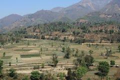 Agricoltura del terrazzo del Nepal Fotografia Stock Libera da Diritti