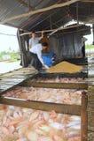 Agricoltura del tilapia rosso in gabbia sul fiume nel delta del Mekong del Vietnam Fotografie Stock
