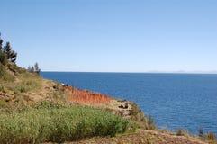 Agricoltura del Titicaca Fotografia Stock Libera da Diritti