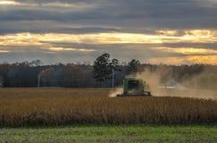 Agricoltura del tramonto Fotografie Stock