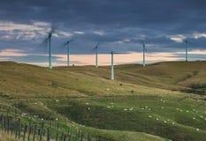 Agricoltura del vento Fotografia Stock