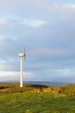 Agricoltura del vento Immagini Stock