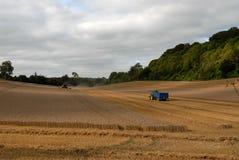 Agricoltura del Wiltshire Fotografia Stock