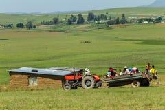 Agricoltura dell'ascensore del trattore della famiglia Fotografie Stock Libere da Diritti
