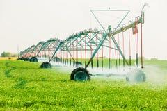 Agricoltura dell'impianto di irrigazione per innaffiare fotografia stock libera da diritti