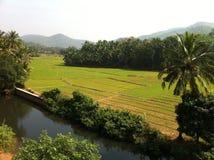 Agricoltura dell'India con il canale Fotografie Stock Libere da Diritti