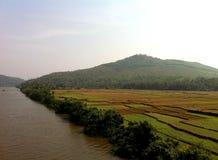 Agricoltura dell'India sulla sponda del fiume Fotografia Stock