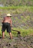 Agricoltura dell'uomo Fotografia Stock Libera da Diritti