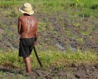 Agricoltura dell'uomo Immagini Stock Libere da Diritti