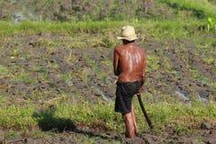 Agricoltura dell'uomo Immagine Stock Libera da Diritti
