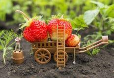 Agricoltura dell'uomo del giocattolo Immagine Stock