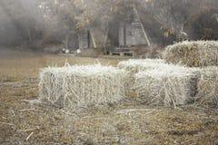 Agricoltura della balla di fieno in azienda agricola Immagini Stock