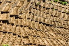 Agricoltura della buca Immagini Stock