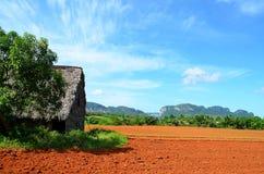 Agricoltura della casa in Vinales, Cuba Fotografia Stock Libera da Diritti