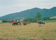 agricoltura della Corea fotografia stock libera da diritti
