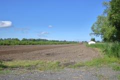 Agricoltura della costa ovest Fotografie Stock Libere da Diritti