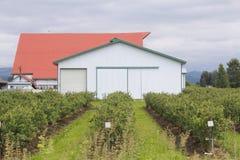 Agricoltura della costruzione pratica Fotografia Stock Libera da Diritti