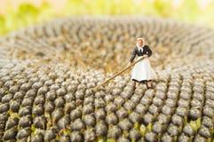 Agricoltura della donna del giocattolo Fotografia Stock Libera da Diritti
